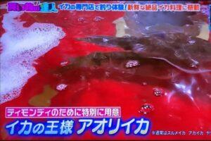 TBSテレビ「王様のブランチ」にて、上野イカセンターをご紹介いただきました!